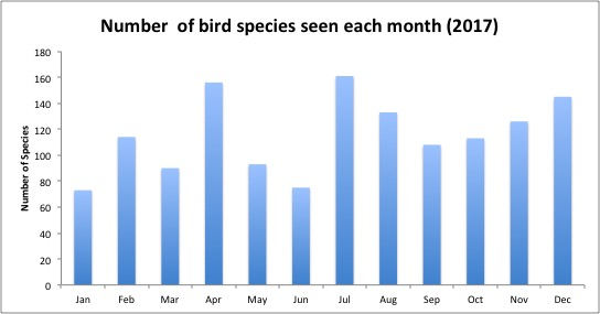 bird by month