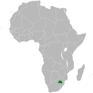 Botha's Lark range map